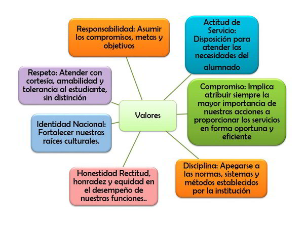 bneed valores